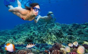 Snorkelers3