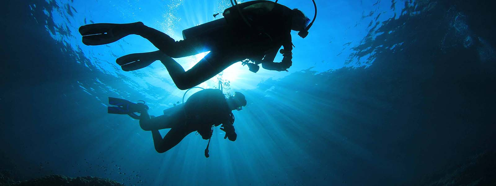 Best Florida Getaways For Diving And Snorkeling